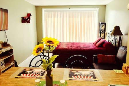 Studio w/ Hot Tub/ Kitchen/King Bed - Frisco - Apartament
