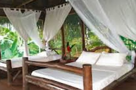 Jungle/ Beach bungalow with meals - dominical - Apartment