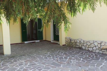 Villa dei Pini, Relax sui colli Romani - Zagarolo - Villa