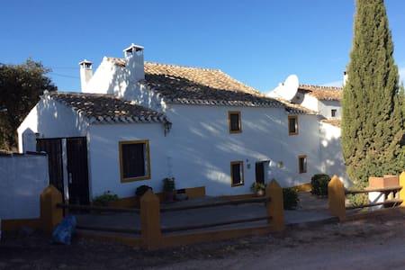 Charming Spanish house. - House
