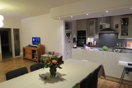 Appartement to rent - Wilrijk, Antwerp - Antwerpen - Flat