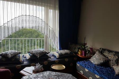 Jolie appartement situé à Bruxelles - Evere