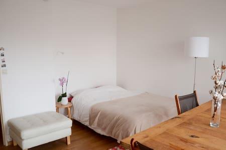 Studio cosy au pied du RER B (10' de Paris centre) - Gentilly