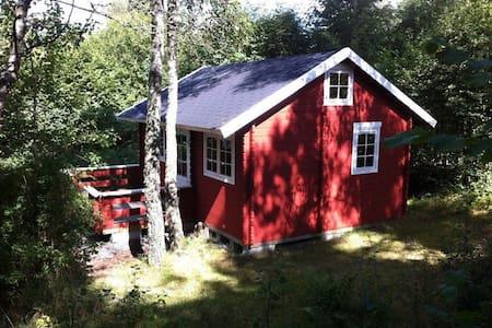Hytte i 3 hektar egen skov, som hører til huset :) - House