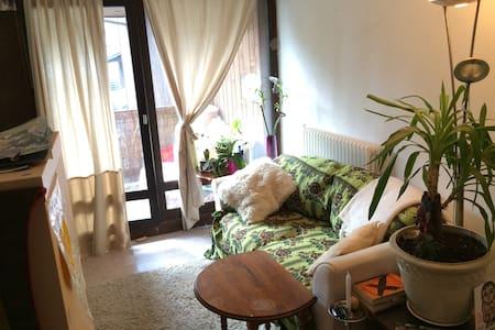 appartement coquet aux Houches vallée de chamonix - Appartamento