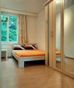 Cozy, well located room in Zurich city - Wohnung
