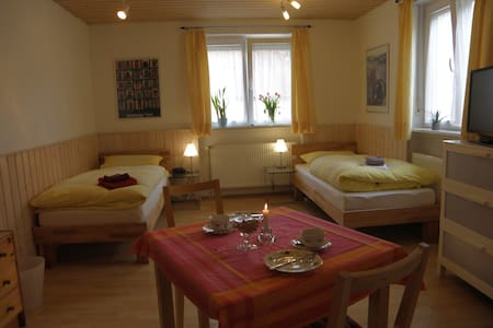 """Guest apartment """"A place for two"""" - Heidelberg"""
