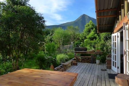 Boutique Vintage Forest Cabin,panoramic loft views - Zomerhuis/Cottage