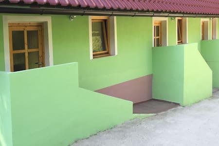 Guest Hause Blazic II. Bor - Daire