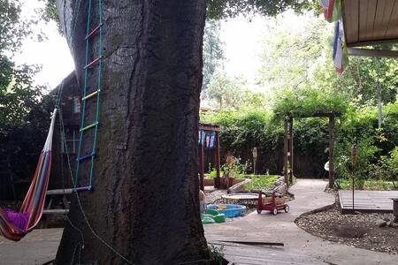 Kali's Treehouse - Santa Rosa