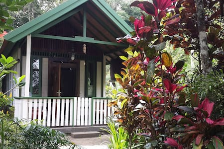 Mi Casa Guest House RUMAH RICO - Bed & Breakfast