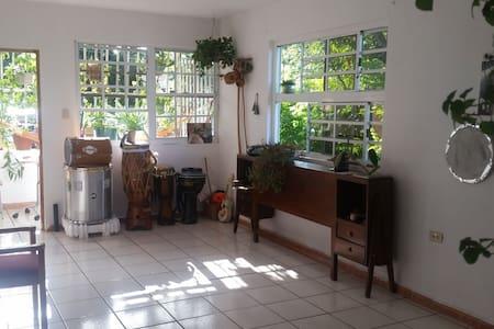 Santurce Retreat Apartment - San Juan