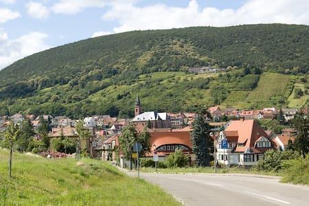 Wohnen in der Toskana Deutschlands - Pis