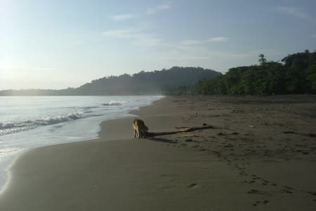 Caribbean Beach Cabin Solo Retreat - Puerto Viejo de Talamanca - House