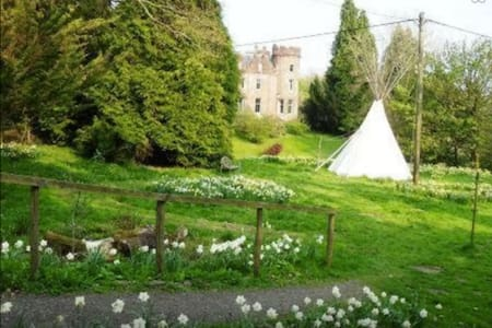 Tipi in pretty woodland setting