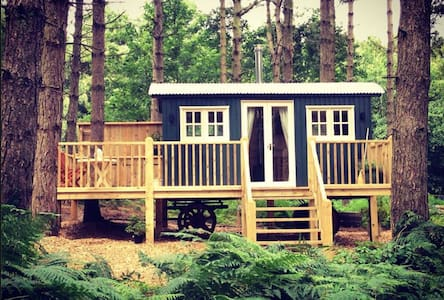 Cosy Winter Woodland Glamping in Norfolk - Grimston - Cabin