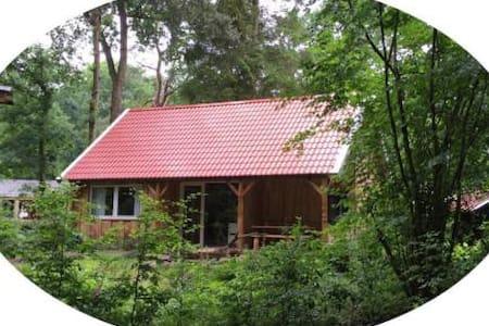 Oud & Nieuw in het bos; nieuwe huisje te Zuidlaren - Blockhütte