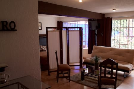 Apartment in San Angel