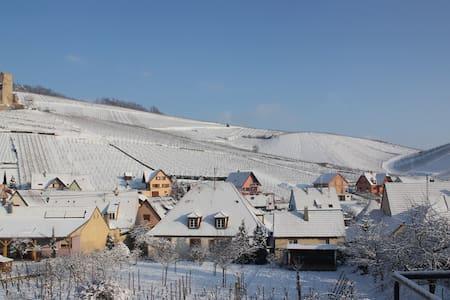 Dans le vignoble à 6km centre de Colmar - Katzenthal - Wohnung