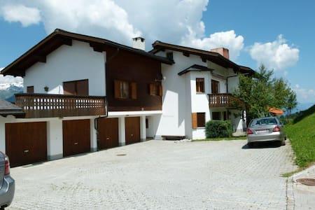 Ferienwohnung Spinatscha in Miraniga Obersaxen - Apartment