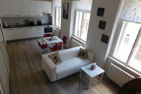 Krásný byt,výborná lokalita(tram 1min, metro 5min) - Prague