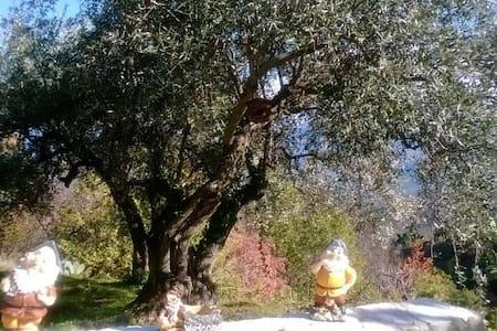 Casetta nel Parco delle Madonie - Castelbuono - Kabin