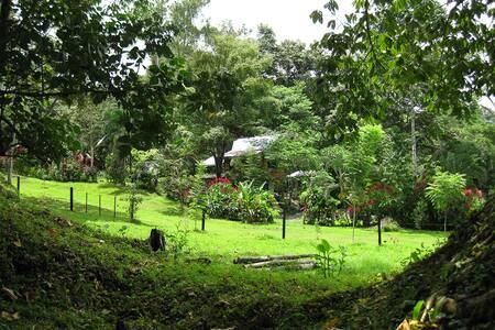 La casita del Rio - Golfito - Chalet