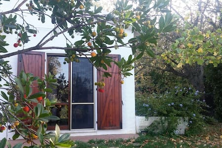 Casa Botanica nel Parco del Conero - Sirolo - Rumah