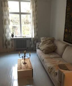 Stylish and romantic big studio in the city center - Åbo