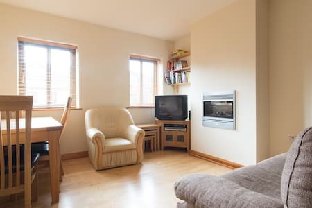 Cosy and spacious 2B in Galway City - Galway