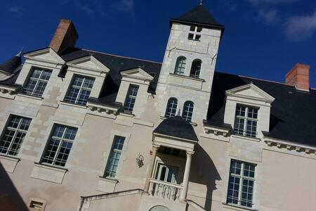 Magnifique loft au Château - Castillo