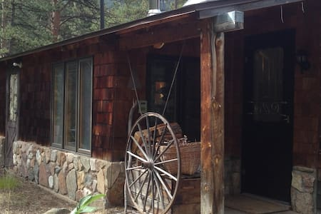 Mountain Cabin in Poudre Canyon - Zomerhuis/Cottage