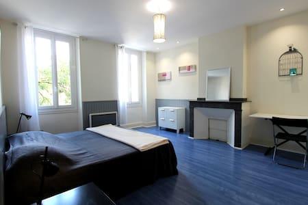 Spacieuse chambre en centre ville d'albi - Albi