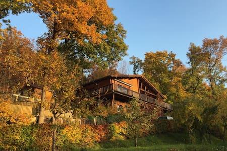 Holzhaus am Waldrand, Eifel, Wandern & Reiten - Schalkenbach