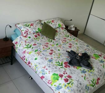 Huge room in our lovely big unit - Darwin  - Apartment