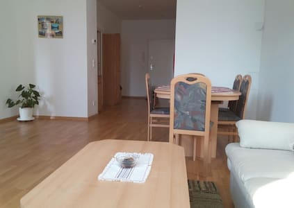 Roomy flat near city center - Apartment