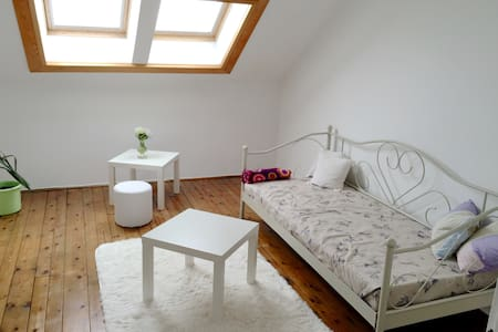Charming attic in the heart of town - Appartement