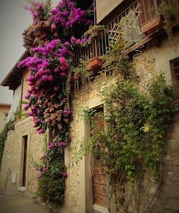 app.to vacanze La Bouganvillea - Manerba del Garda - Wohnung