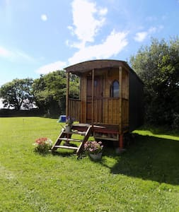 Shepherds Hut Pembrokeshire Wales + horse stopover - Cabana