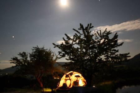Wohnen im Geodome mitten in der Natur...für Frauen - Yurt