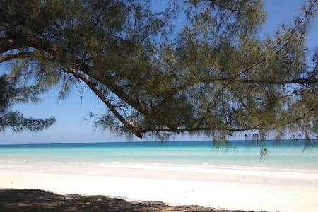 Tropical paradise awaits in Bahamas - Daire