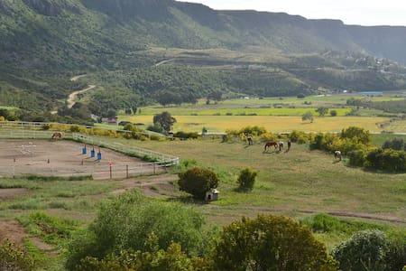 Rancho Lupita horse heaven getaway - Haus