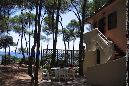 Stella Maris Villa sul mare - Villa