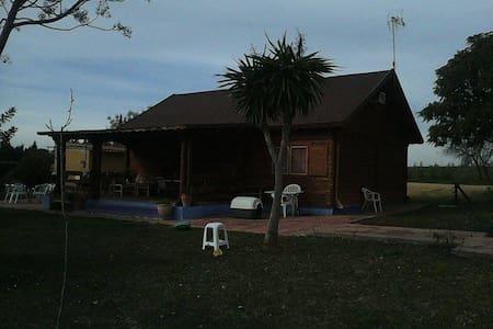 Cabaña de madera con piscina - Zomerhuis/Cottage