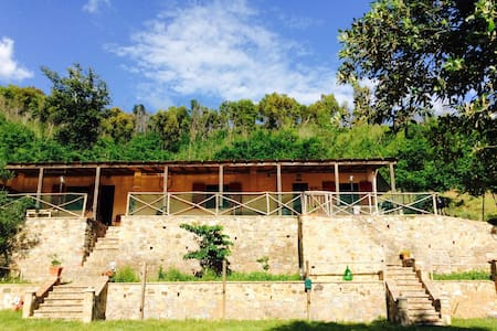Nature and silence in tuscany - House