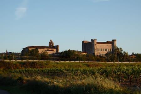 Chateau de Douzens - Templar Castle - Castle