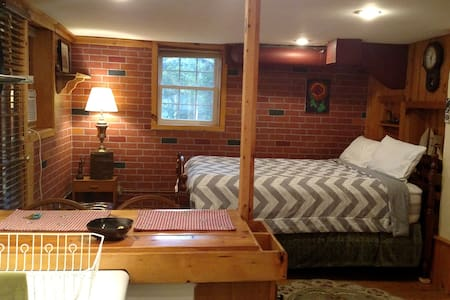 1 BdRm efficiency, walk to Asheville - Apartamento