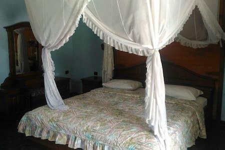 Bagus Homestay lovina(luxury rooms) - singaraja - Bed & Breakfast