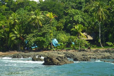 Jungle & beach getaway Tours to Corcovado/Cano Is. - Altres