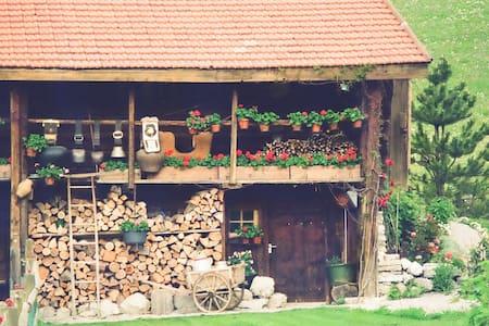La Suisse typique, Heidiland. Chalet d'exception. - Haut-Intyamon - Chalet